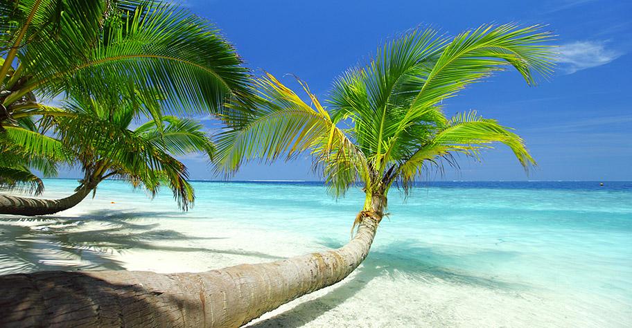 Malediven Sri Lanka Badeferien und Rundreise