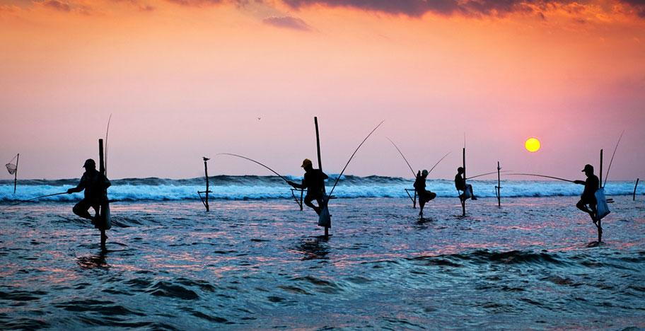 Sri Lanka Reisetipps und Länderinformationen